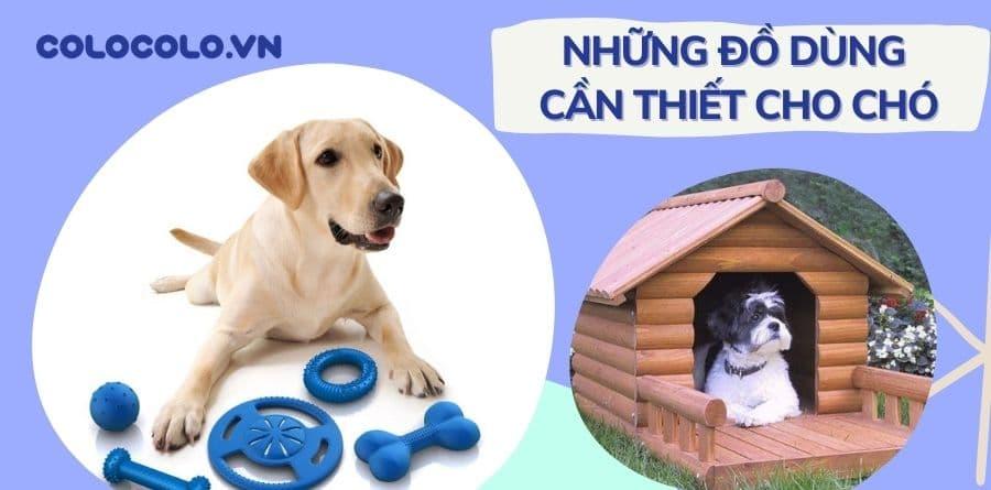 đồ dùng cho chó