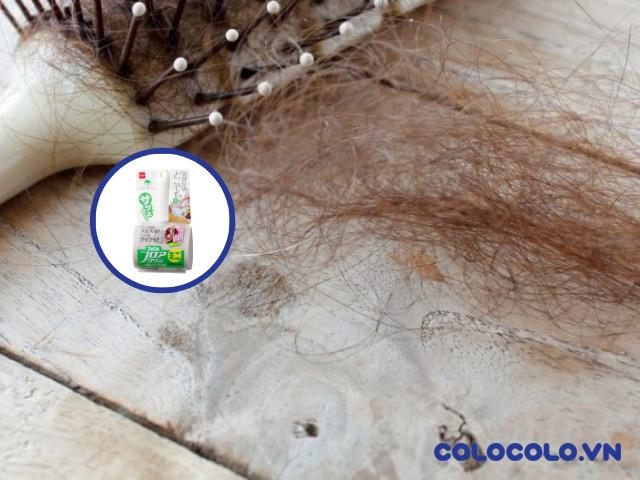 rụng tóc kiêng ăn gì