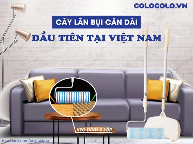 Cây lăn bụi cán dài đầu tiên tại Việt Nam
