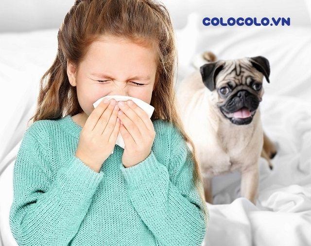 Nguyên nhân gây dị ứng còn đến chủ yếu từ những vật nuôi nhà bạn