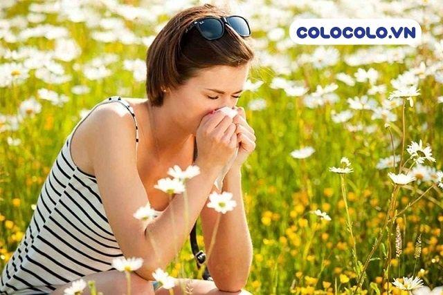 Phấn hoa là một phần dẫn đến nguyên nhân gây dị ứng hiện nay